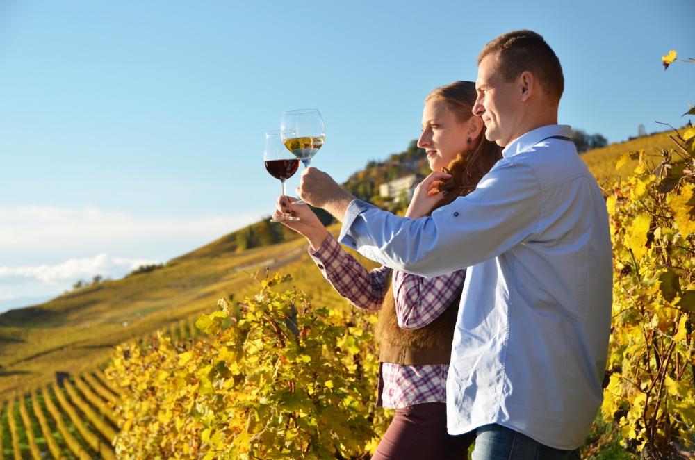 Wine Tasting in Switzerland